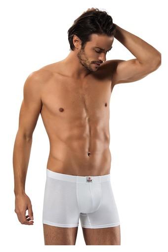 ERDEM - Erdem Erkek Boxer Likralı Kutulu (ERDEM1420)